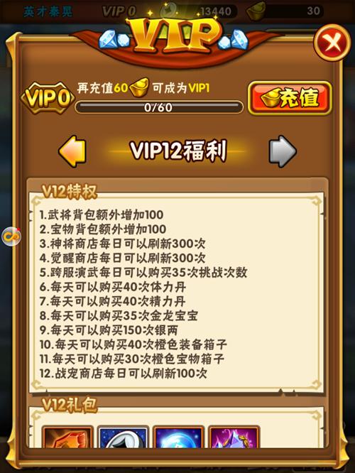 少年三国志VIP商城图13